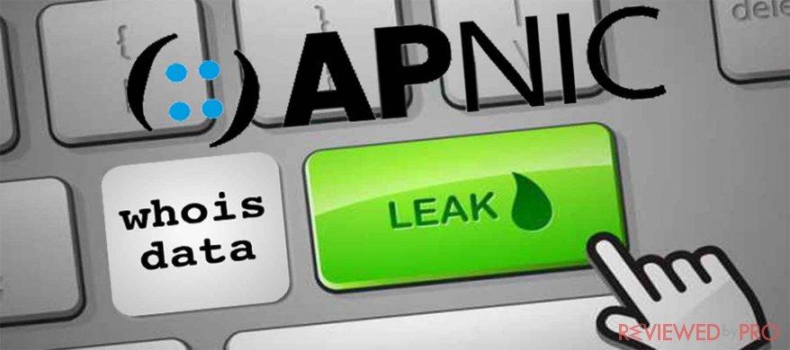apnic leaks whois